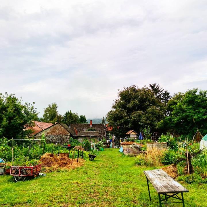 workaway in Hungary countryside